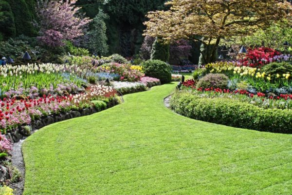 commercial landscaped flower beds