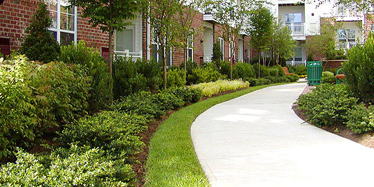 landscaped apartment fronts